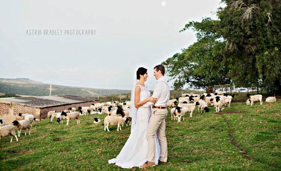Wedding_A